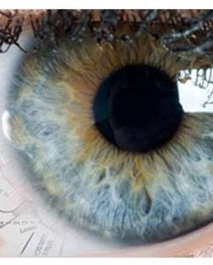 curso-de-iridologia.jpg