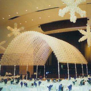 snow canopy.jpg.jpg