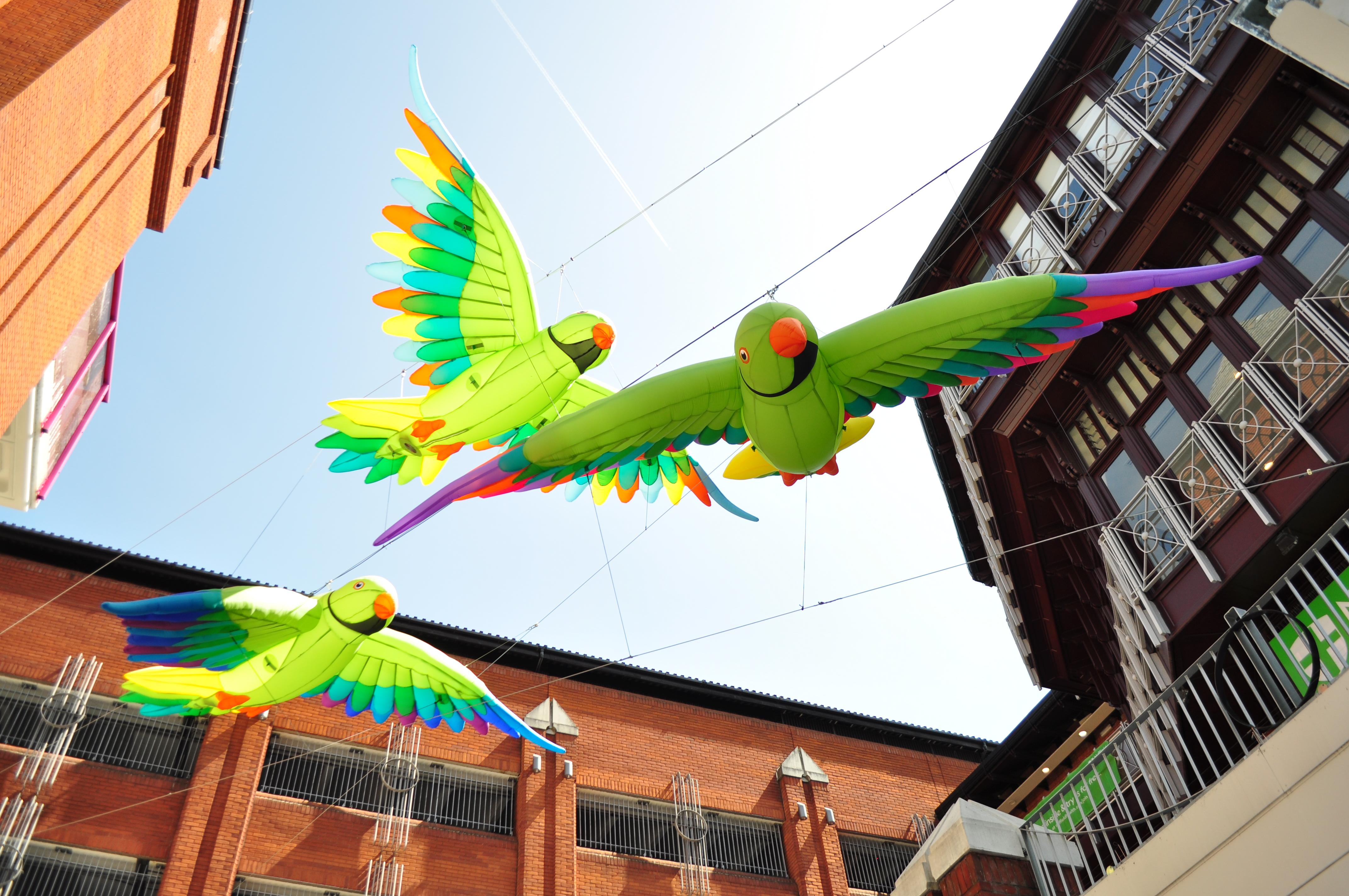 Ealing Parakeets