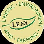 Leaf marque.png