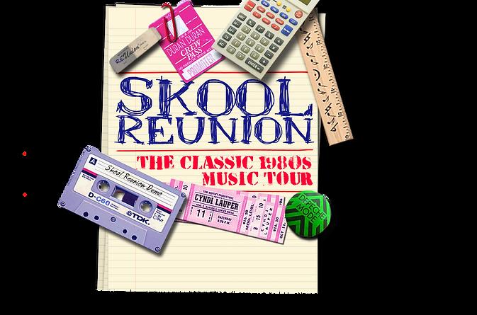 skool-reunion-website-background.png