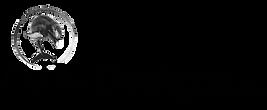 DJM Logo.png