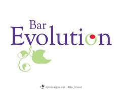 Bar Evolution