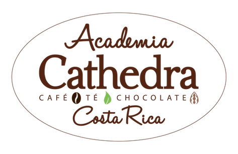 Academia-Cathedra-(1).png