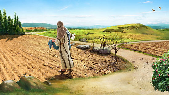 parable_of_the_Sower_pic01.jpg