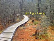 pilgrims_banner_pic.jpg