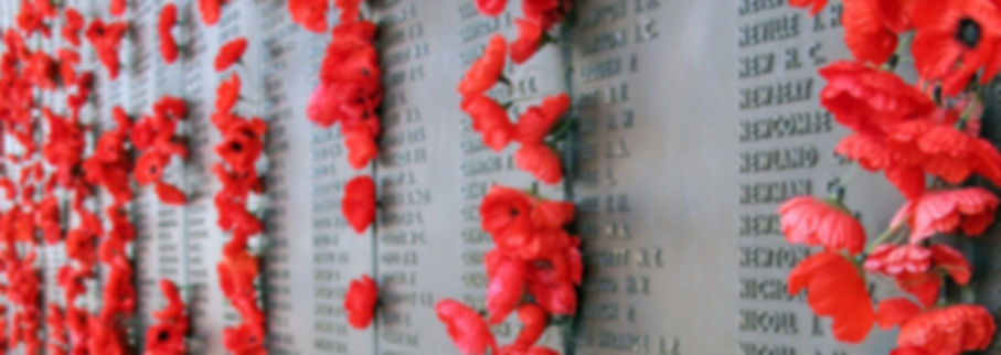 ANZAC Day wall of remembrance PIC.jpg