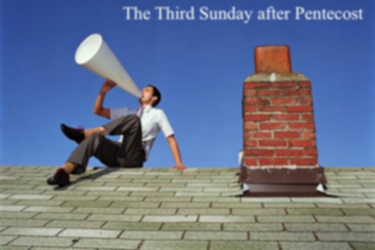 rooftops_PIC01_3rd_after_Pentecost.jpg