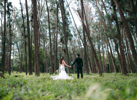 Ernest & Chloe. Forest Pre Wedding