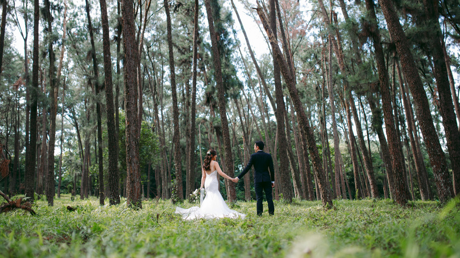 Ernest & Chloe. Forest Pre Wedding