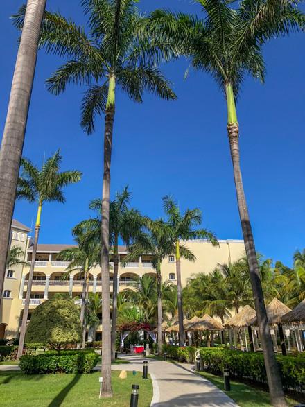 Sorpréndete junto a Iberostar Grand Rose Hall en Jamaica