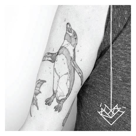 Pinguino Kmín Tattoo