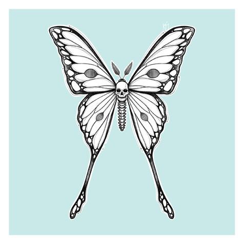 Mariposa Cráneo Kmín Tattoo