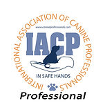 iacp-professional.jpg