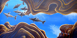 Canyon Dolphins