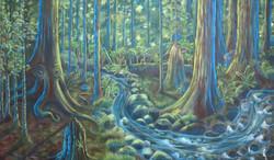Pacific Rainforest