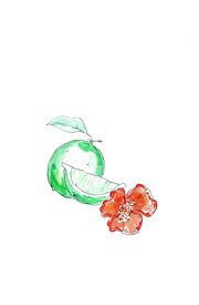 Scotch Bonnet & Lime.jpg