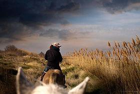 5ba83e378a23 Promenades à cheval. Pensez à réserver vos balades à La Palunette dès que  possible