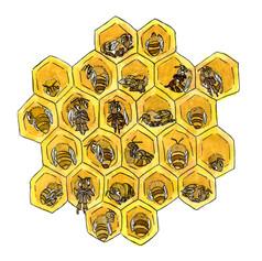 働きたくないハチさんたち