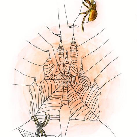 クモ大工の腕