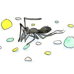 ひなあられを食べるアリ