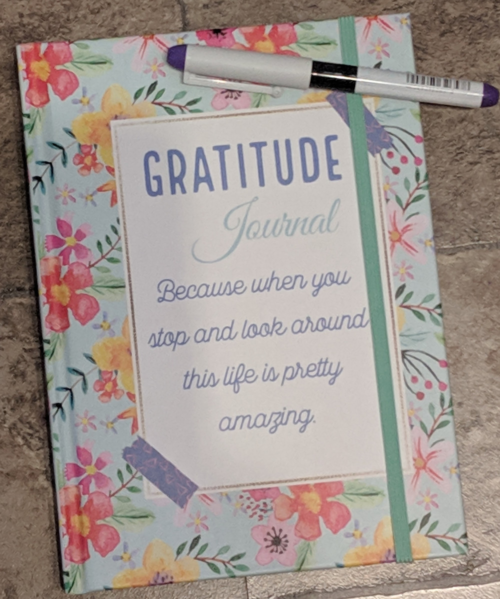 Gratitude Journal and Purple pen