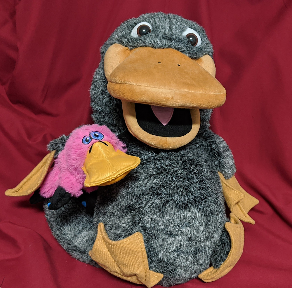 Plush grey Platypus puppet holding a small pink platypus dog toy.