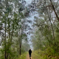 Misty morning exercise (or not!)