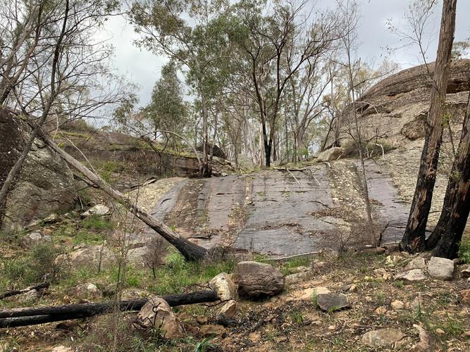 Fabulous Aussie bush scenery on Wollombi Farm