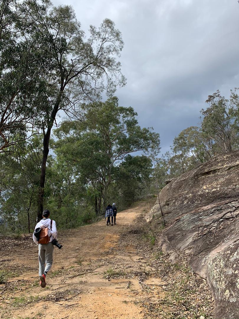 Hiking trails on Wollombi Farm
