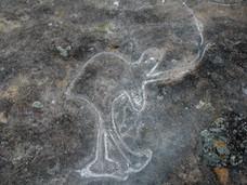Yengo Aboriginal Rock Art - Tim Ainsworth Photography