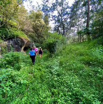 6km of bush trails to discover
