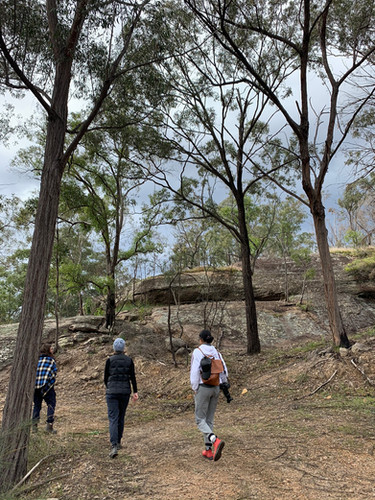 Wollombi Farm is a bushwalkers and photographers delight
