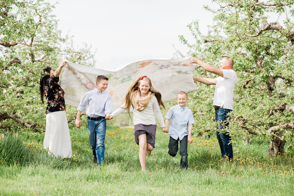 Blooming Orchard Mini Sessions