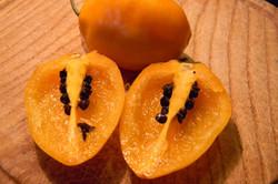 Rocoto Manzano Amarillo