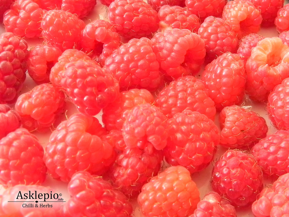 Raspberries(Rubus idaeus)