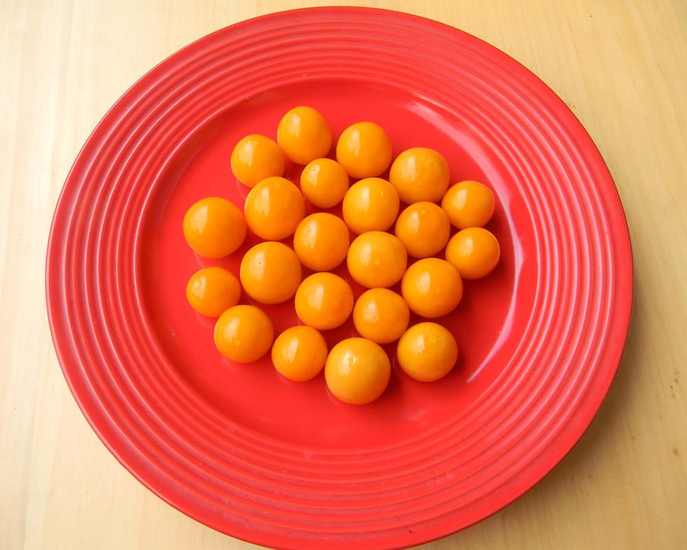 plod Mochyně peruánskě