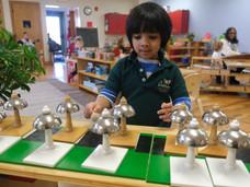 Music in Montessori Classrooms