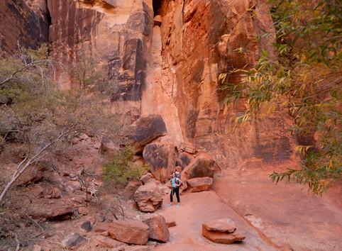 Snow Canyon Hike - Johnson Canyon Trail