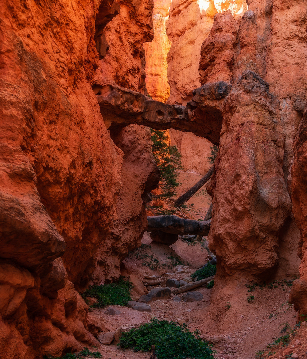 Two Bridges in Bryce Canyon National Park