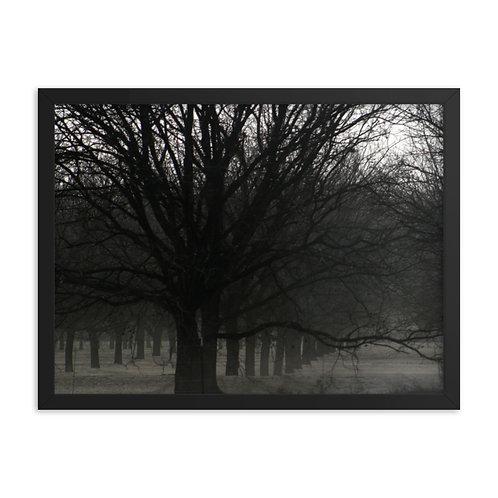 Framed Windbreak Print