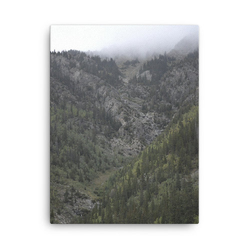 The Valley Print on Canvas