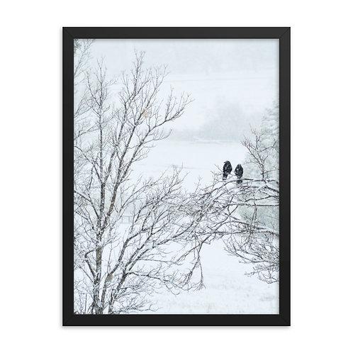 Framed Winter Crows Print