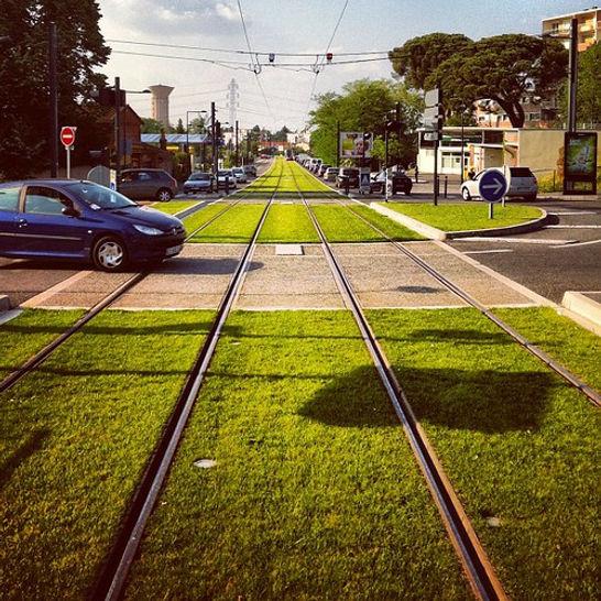 green tram line Toulouse.jpg