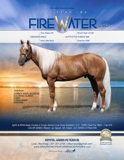 2021-Flityeahimafirewater-stallion-ad-FI