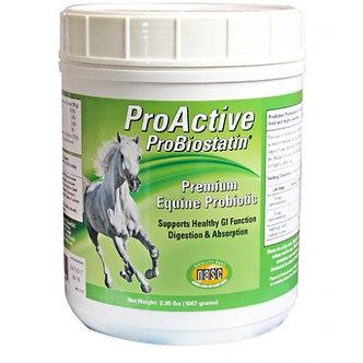 ProActive ProBiostatin Equine Probiotic