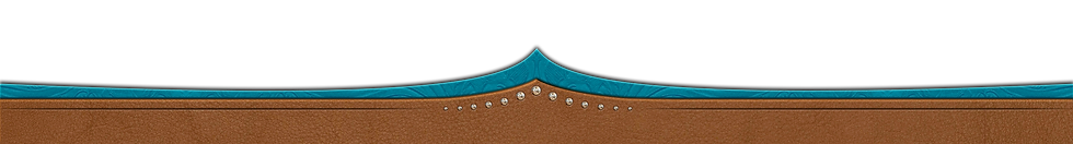 new-teal-leather-footer.png