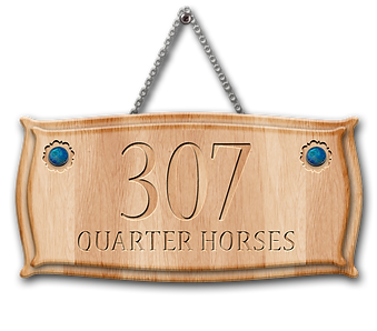 307PH-Wooden-Sign.png