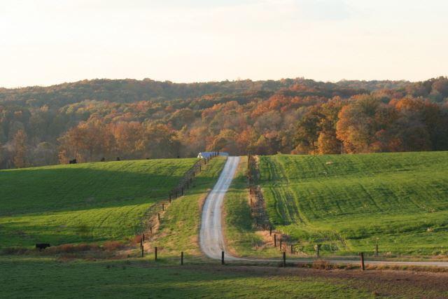 Fischer Farms lane
