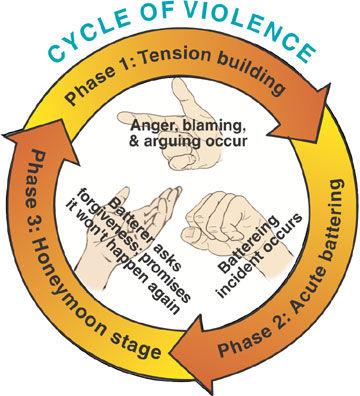 dvcycle.jpg